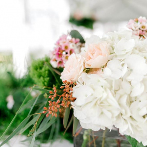 Hydrangea Centerpiece - Juliette and Abdon