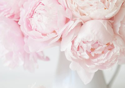 beautiful pink peony flowers bouquet